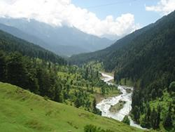 Tour To Pahalgam